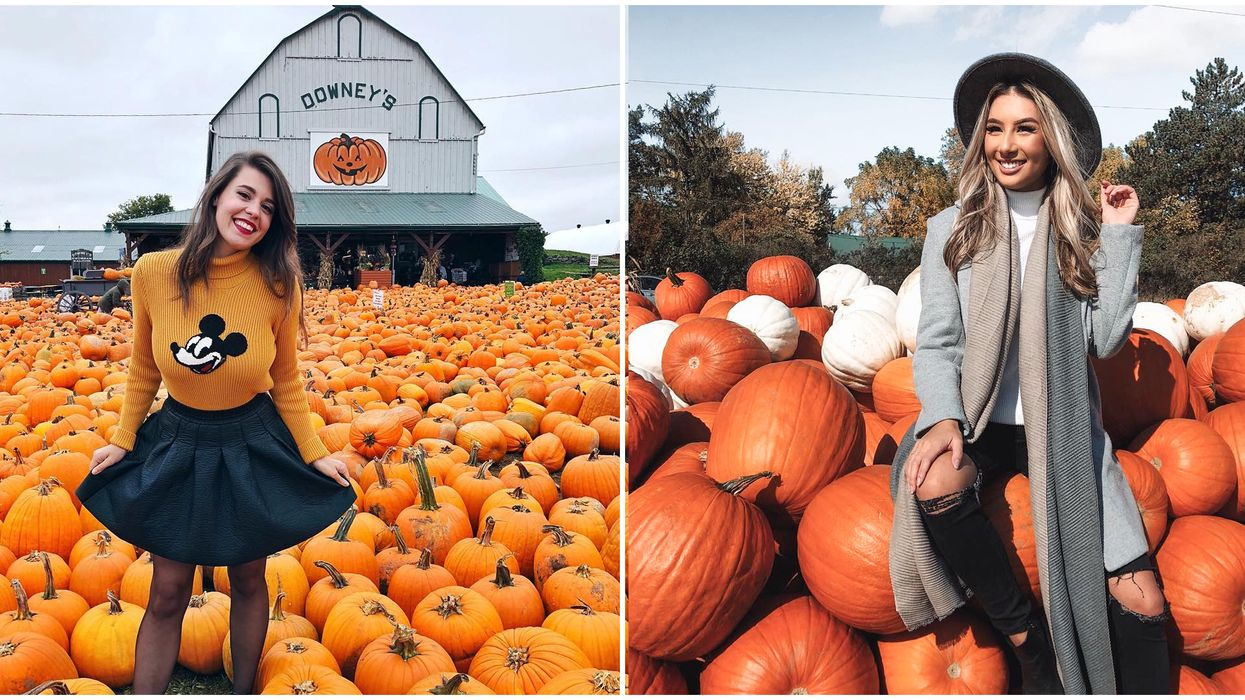 Here Are 8 Pumpkin Patches In Ontario That Are So Worth The Drive This Fall