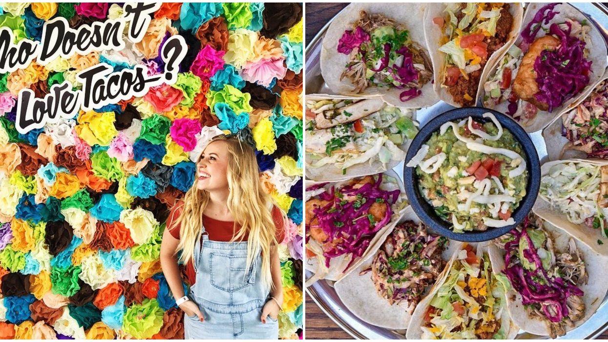 Arizona's Hosting A Huge $3 Taco Festival This Fall