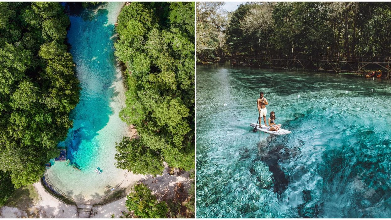 One Of The Clearest Blue Springs In Florida Is Only A 2.5 Hour Road Trip From Orlando