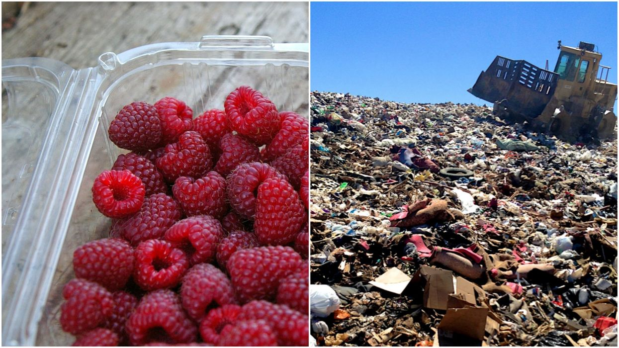 """Calgary Is Spending $130,000 To """"Fix"""" Their Recycling Problems & Dump Everything In A Landfill"""