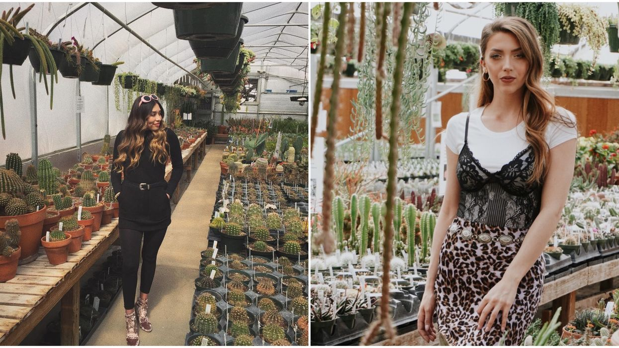 This Stunning Texas Greenhouse Is A Cactus And Succulent Paradise