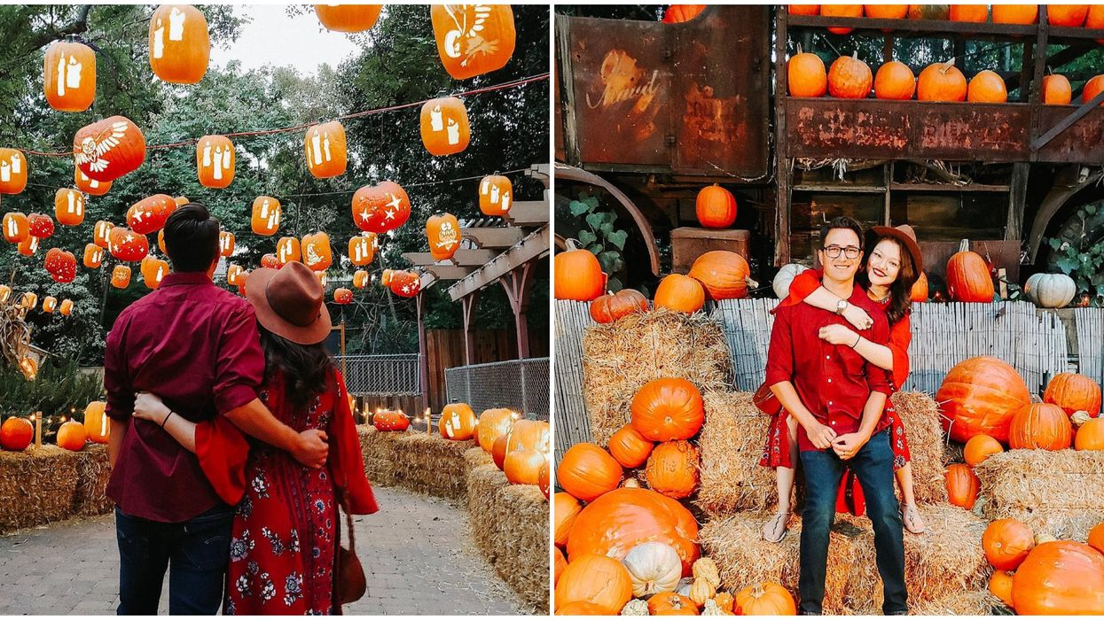 7 Romantic Date Ideas You Can Take Your S/O On This Fall In Dallas