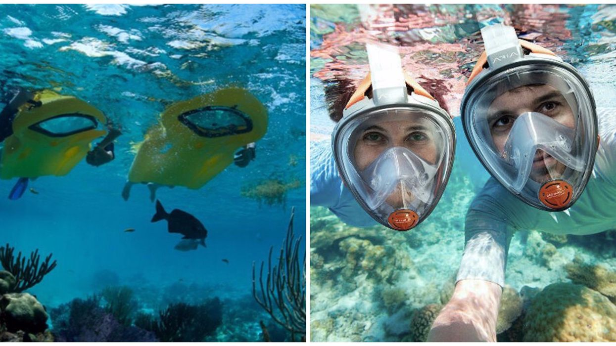 This South Florida Underwater Snorkel Adventure Is Available On Groupon For Super Cheap