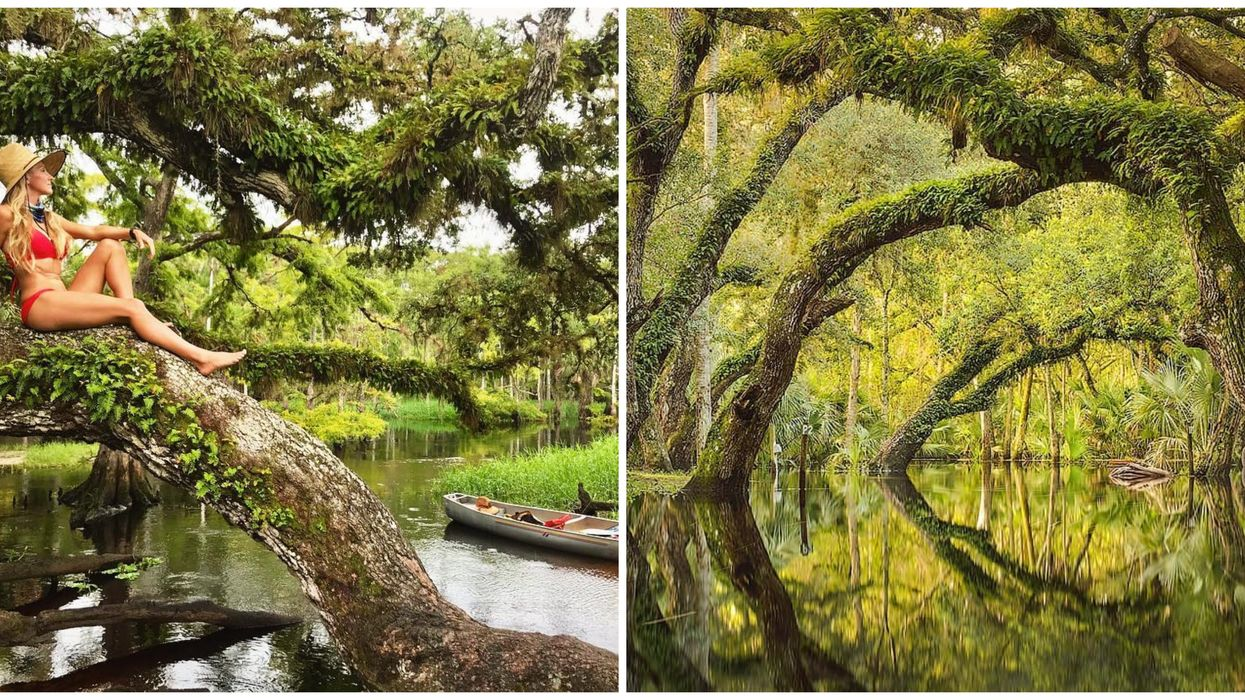 This Mirrory Waterway In Florida Looks Like A Portal To Another Dimension