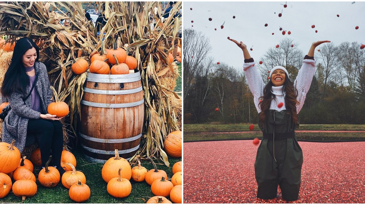 27 Things To Do In Ontario You Have To Add To Your 2019 Fall Bucket List