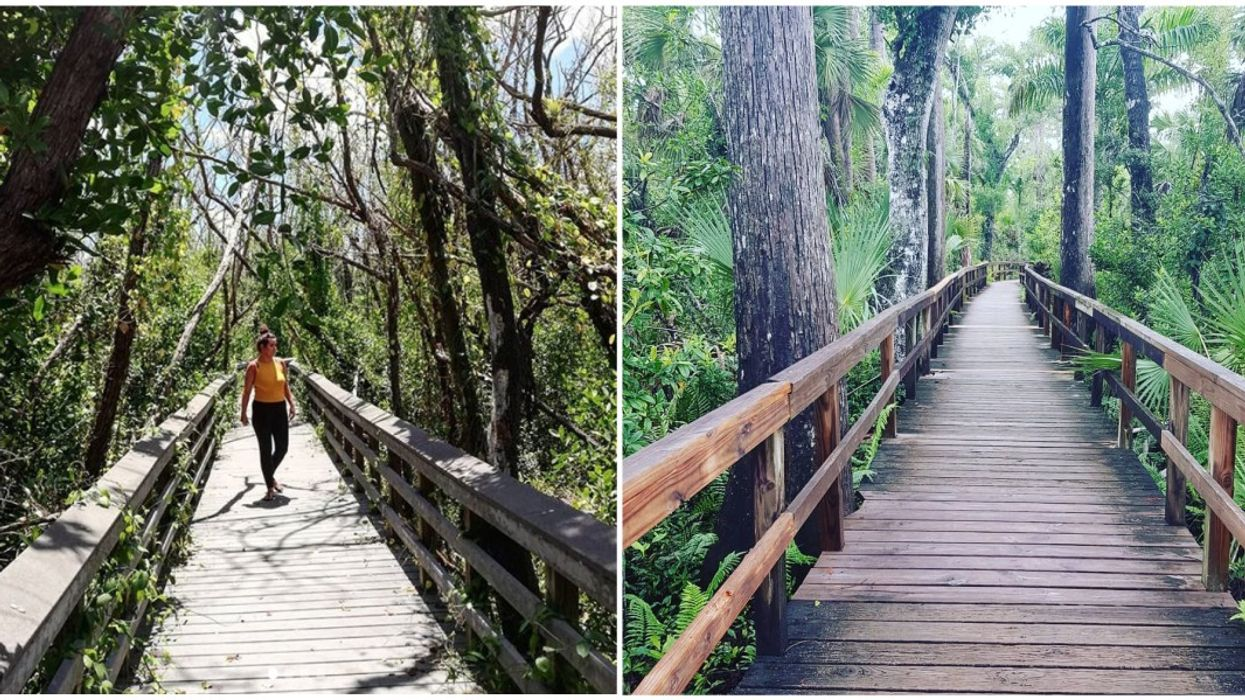 11 Perfect Fall Hikes You Must Do In South Florida
