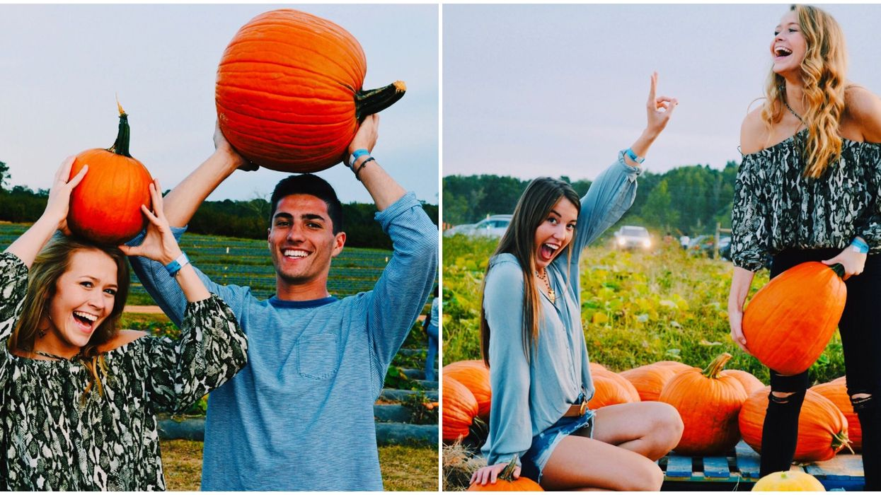 You Can Pick Your Own Pumpkin On This Huge 330-Acre Farm In South Georgia