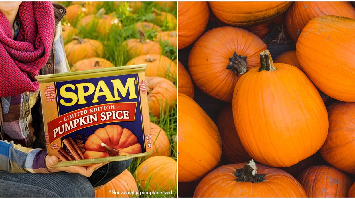 Pumpkin Spice SPAM Is Available In Canada This Fall Whether You Want It Or Not