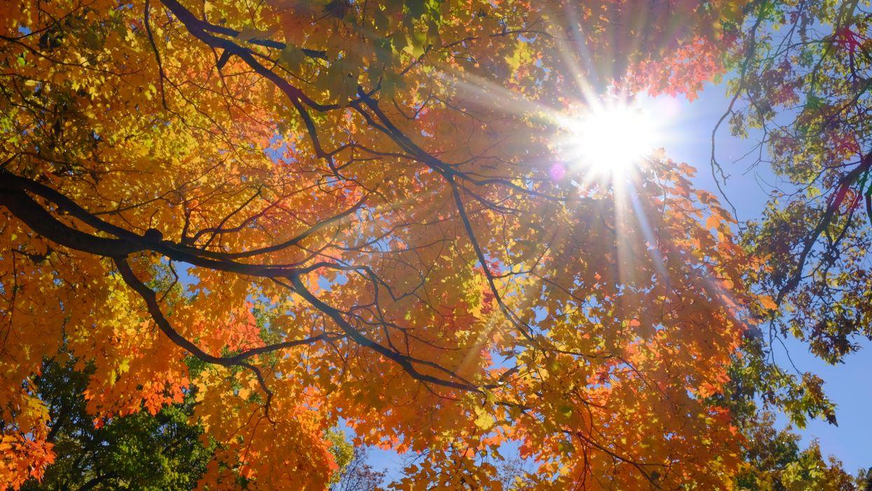 C'est officiellement la fin des températures estivales en fin de semaine au Québec
