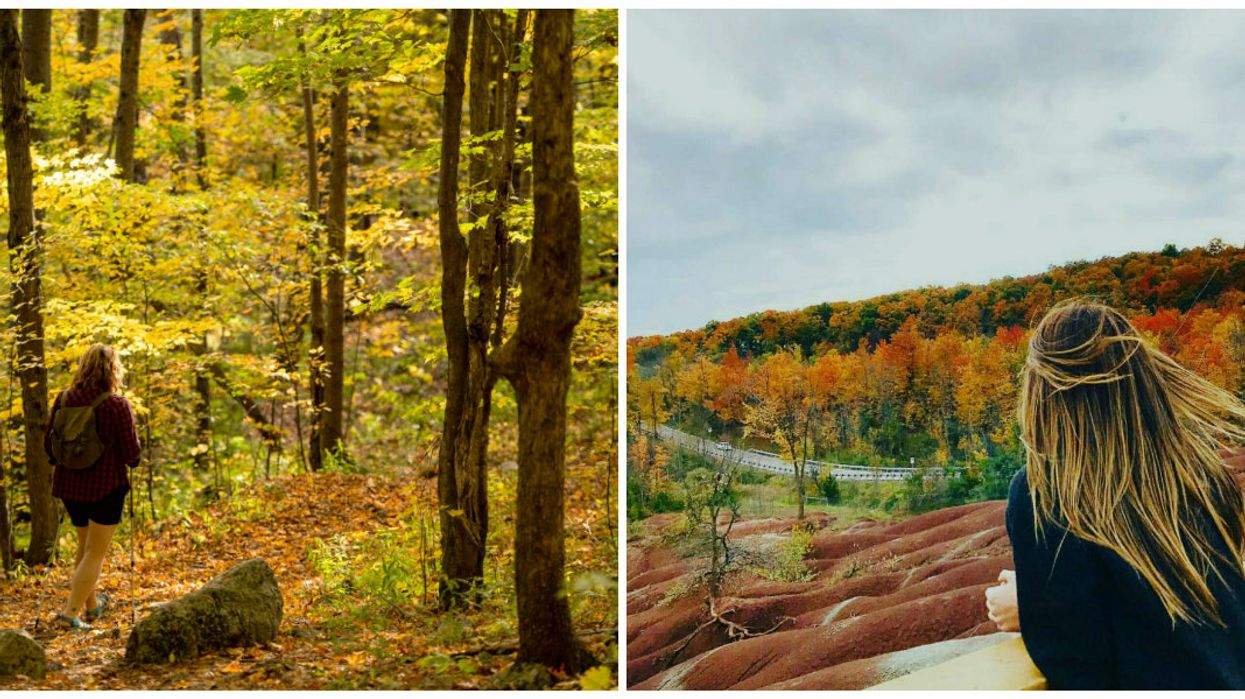 7 Perfect Fall Hikes You Must Do In Ontario