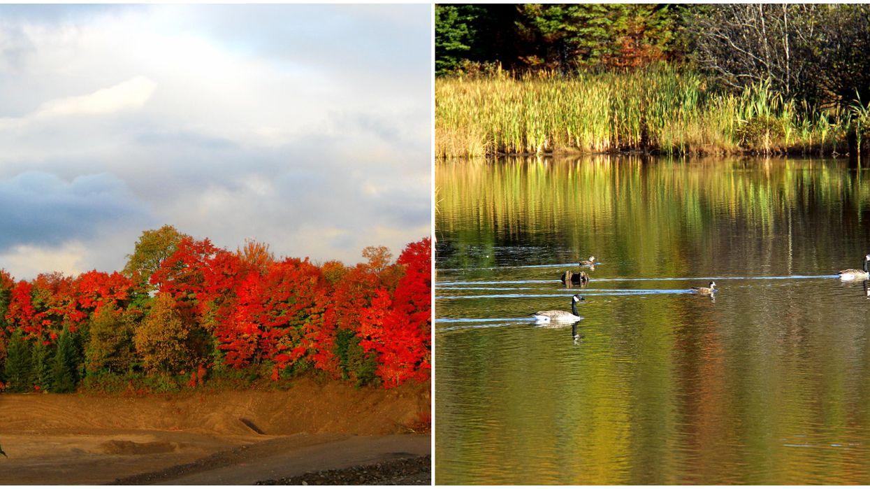 Canada's Environmental Sustainability