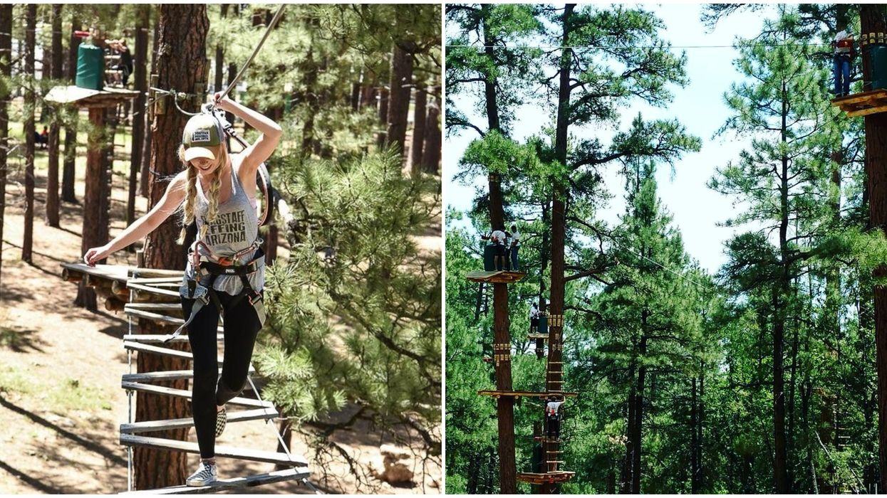 You Can Walk Through The Trees At This Adventurous Rope Course In Arizona