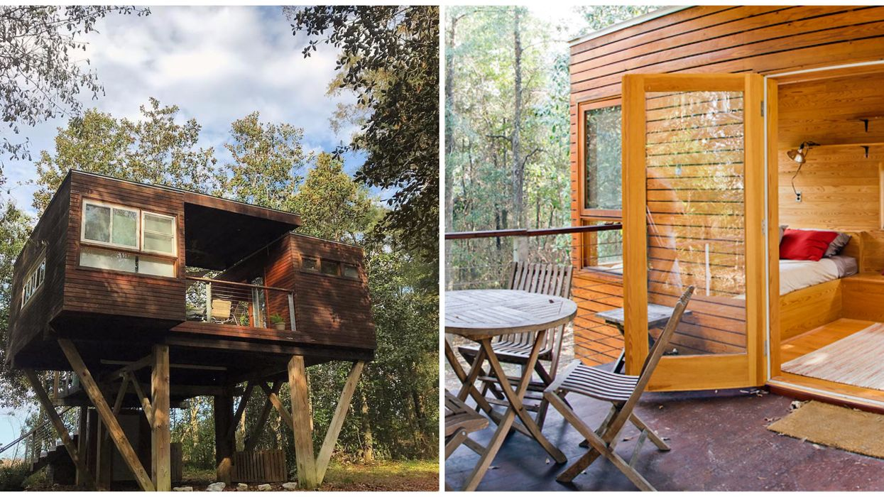 You Can Glamp In A Treehouse At This Secluded North Florida Forest