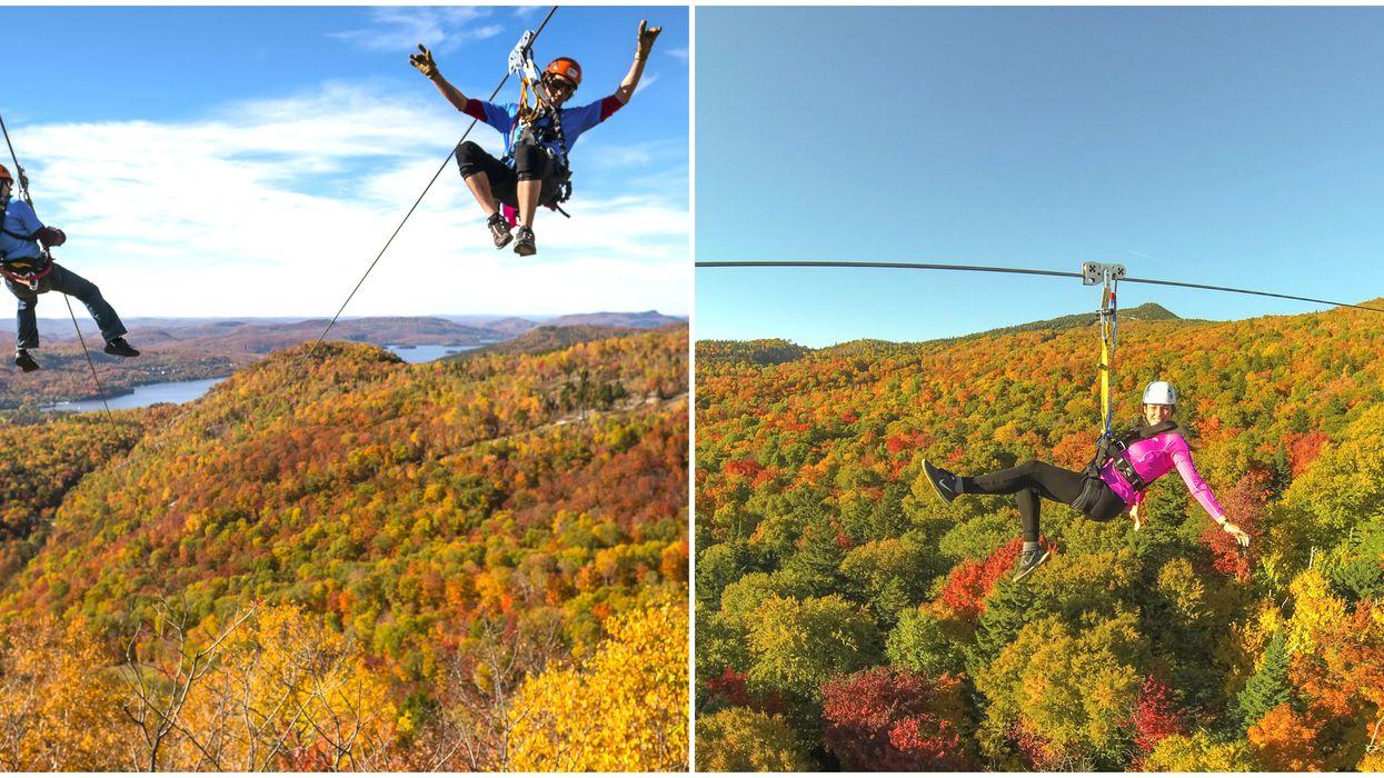 Ziplining Near Ottawa Over The Trees At Ziptrek Ecotours In Mont Tremblant