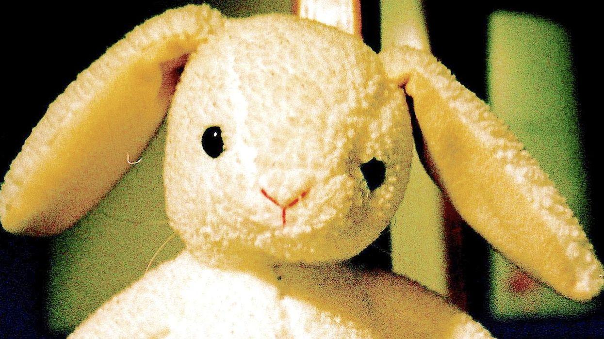PNE Lost Stuffed Bunny