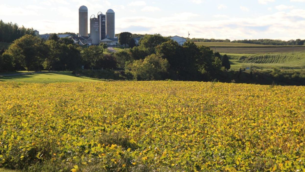 Ces 100 fermes au Québec offrent les visites gratuites en fin de semaine
