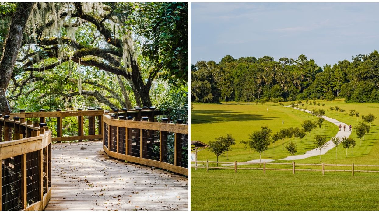 This Greenway In Tallahassee Will Make You Feel Like You're In The Midwest Countryside