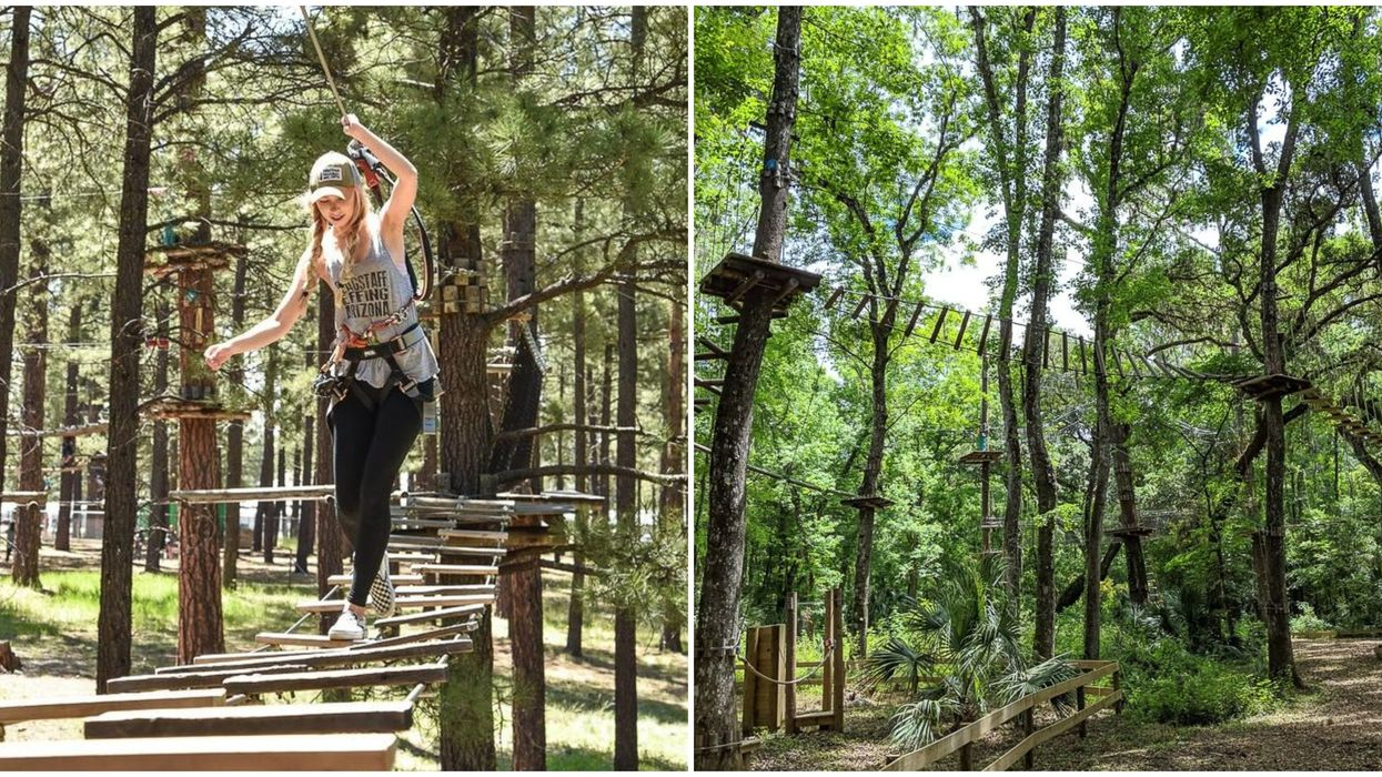 Central Florida Just Got An Extreme New Treetop Obstacle Course With Wild Ziplines