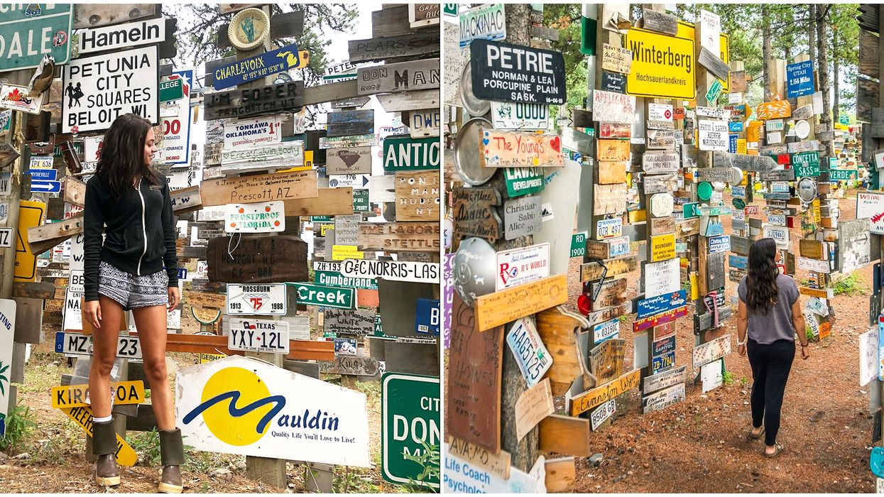 This Sign Post Forest In The Yukon Has 80,000 Signs From Around The World
