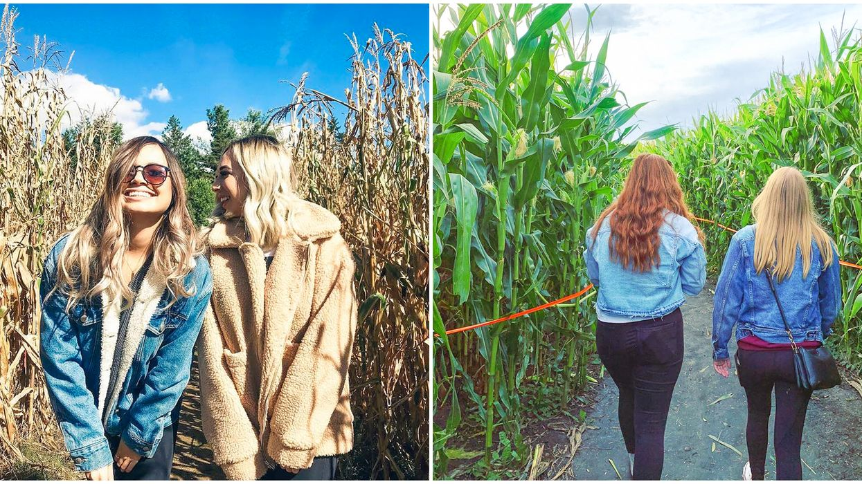 11 Corn Mazes In Canada You Need To Try This Fall With Your Bestie