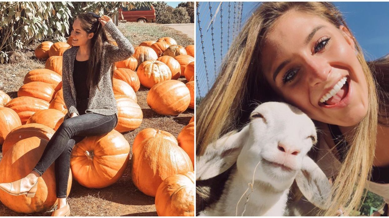 Play With Baby Animals & Eat Fried Pies At This Georgia Pumpkin Patch