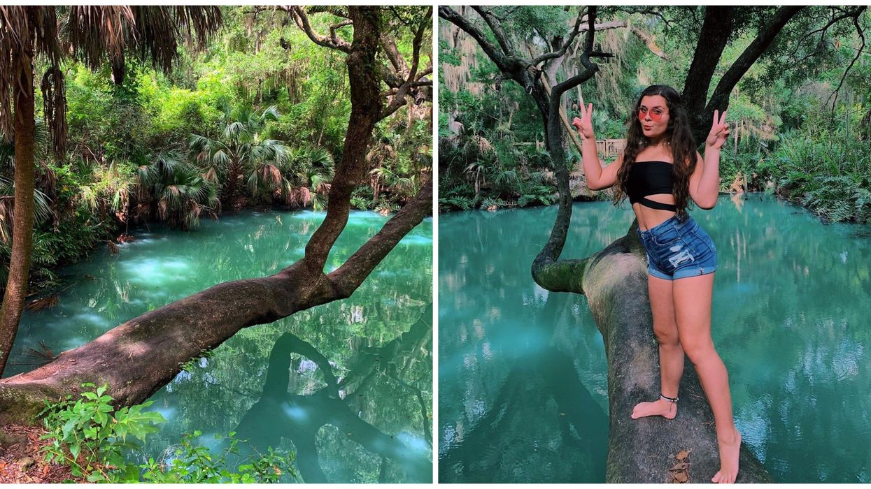 Natural Springs Near Central Florida Include Green Springs Park