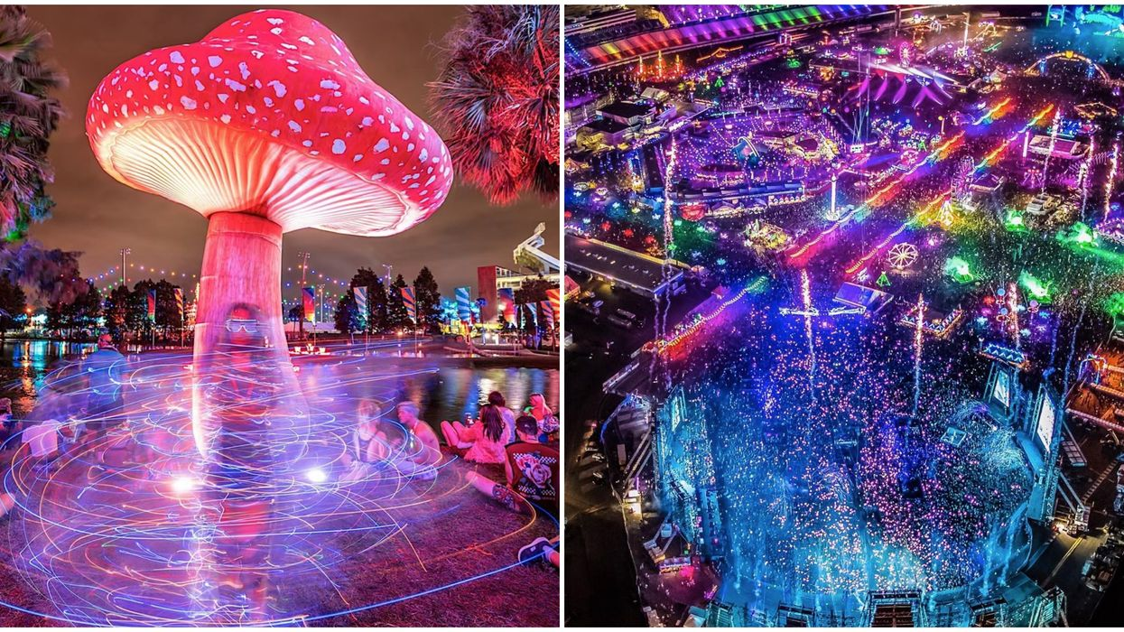 Electric Daisy Carnival Coming To Orlando With Rides & Trippy Interactive Art