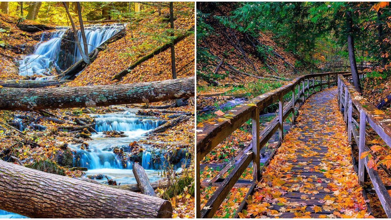 Ontario's Weaver's Creek Falls Transforms Into The Most Beautiful Leafy Paradise Each Autumn
