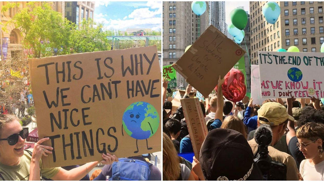 21 Global Climate Strike Sign Ideas That Are Creative & Unforgettable