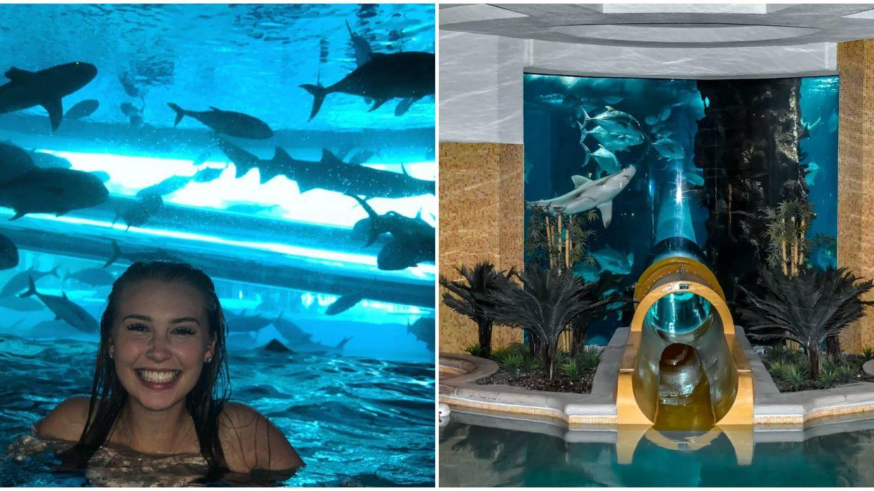Shark Tank Water Slide In Vegas Is Nevada's Best Kept Secret