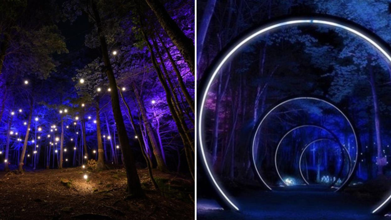 Ce sentier illuminé en forêt est parfait pour une soirée féerique près de Montréal