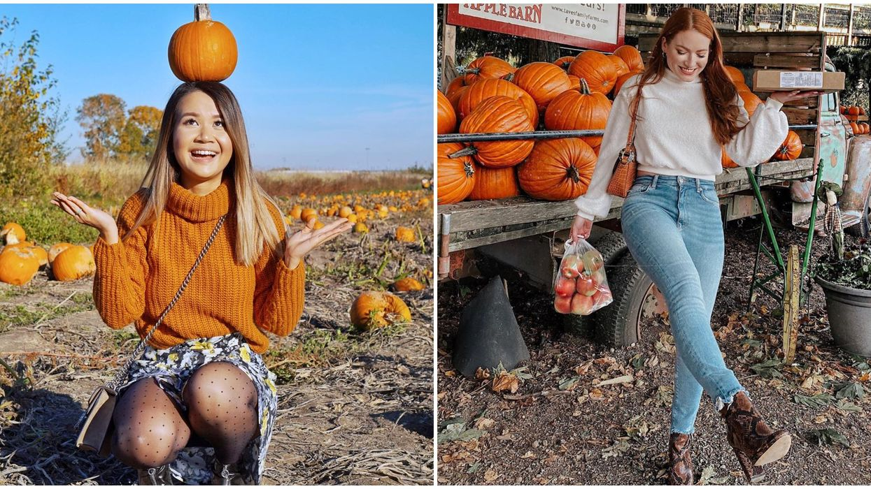 7 Pumpkin Patches Near Vancouver That Are Absolutely Adorable