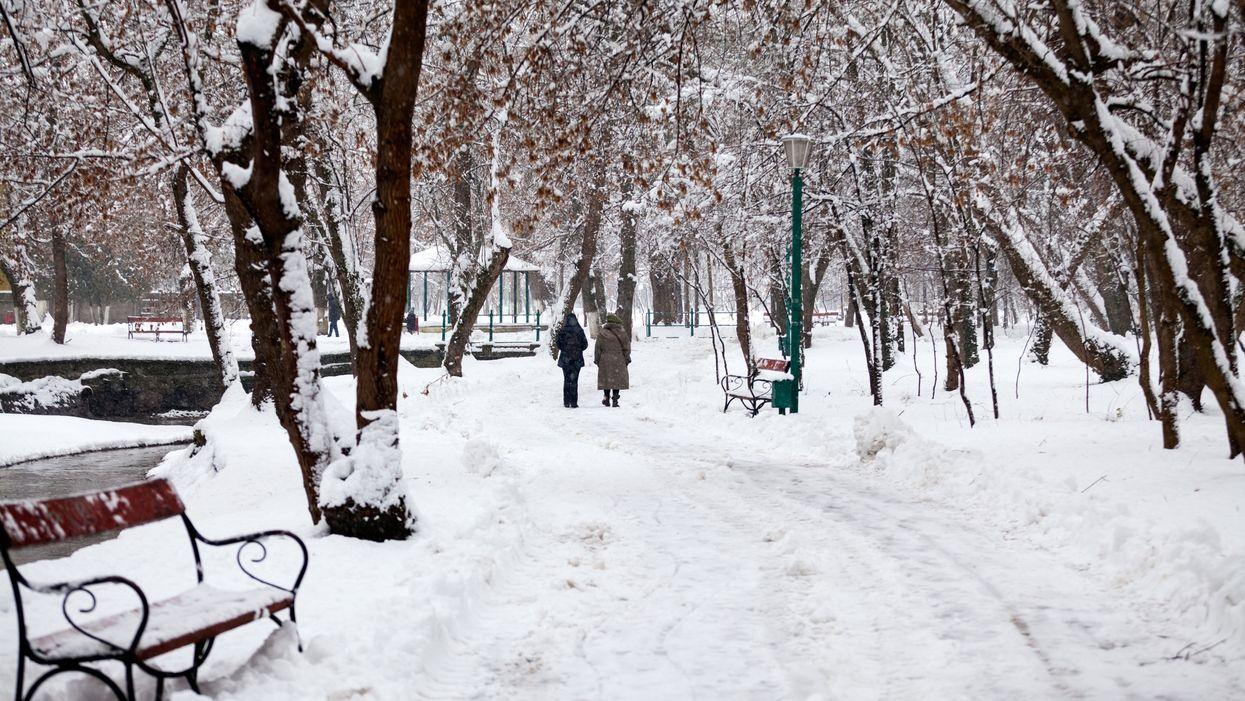 De la neige au Québec est attendue dans certaines régions cette semaine