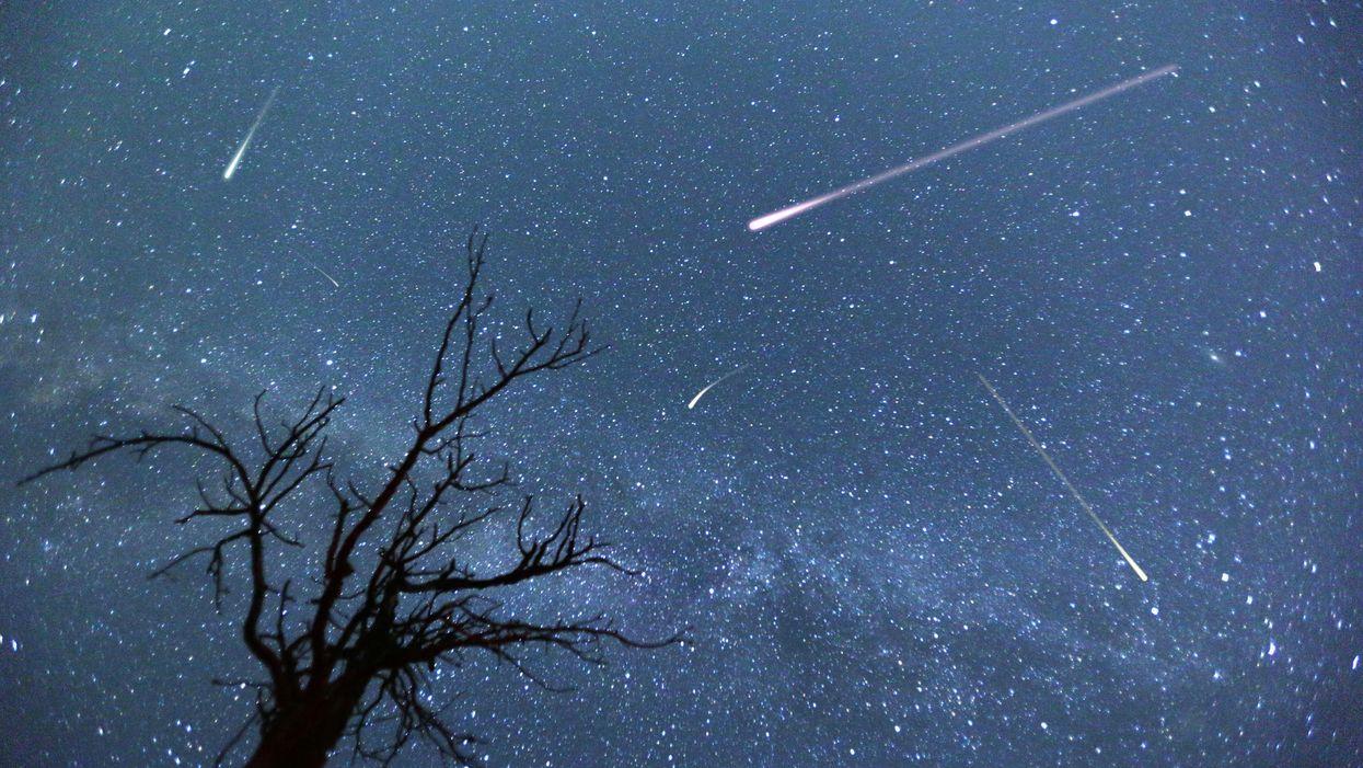 Il va bientôt y avoir des pluies d'étoiles filantes à Montréal et voici où les observer