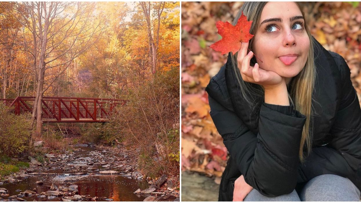 6 Places To See The Prettiest Fall Colours In Toronto If You're Not Into Hiking