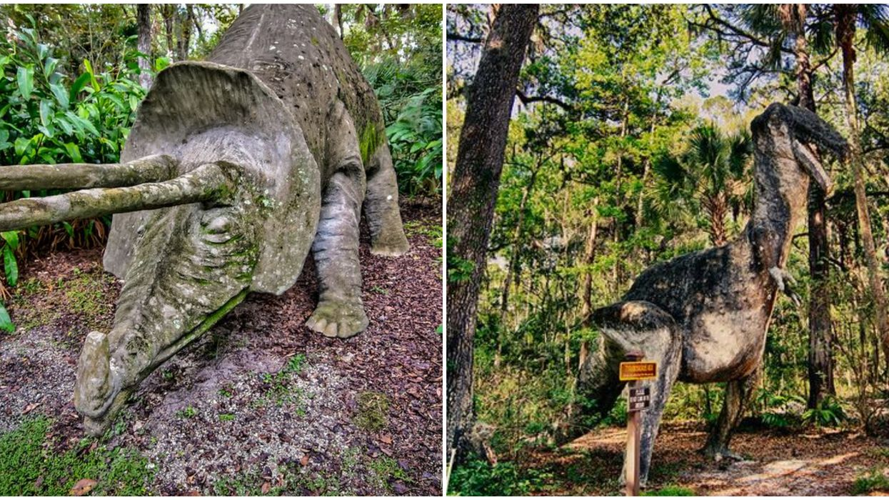 Abandoned Florida Places To Explore Include This 1930s Amusement Park