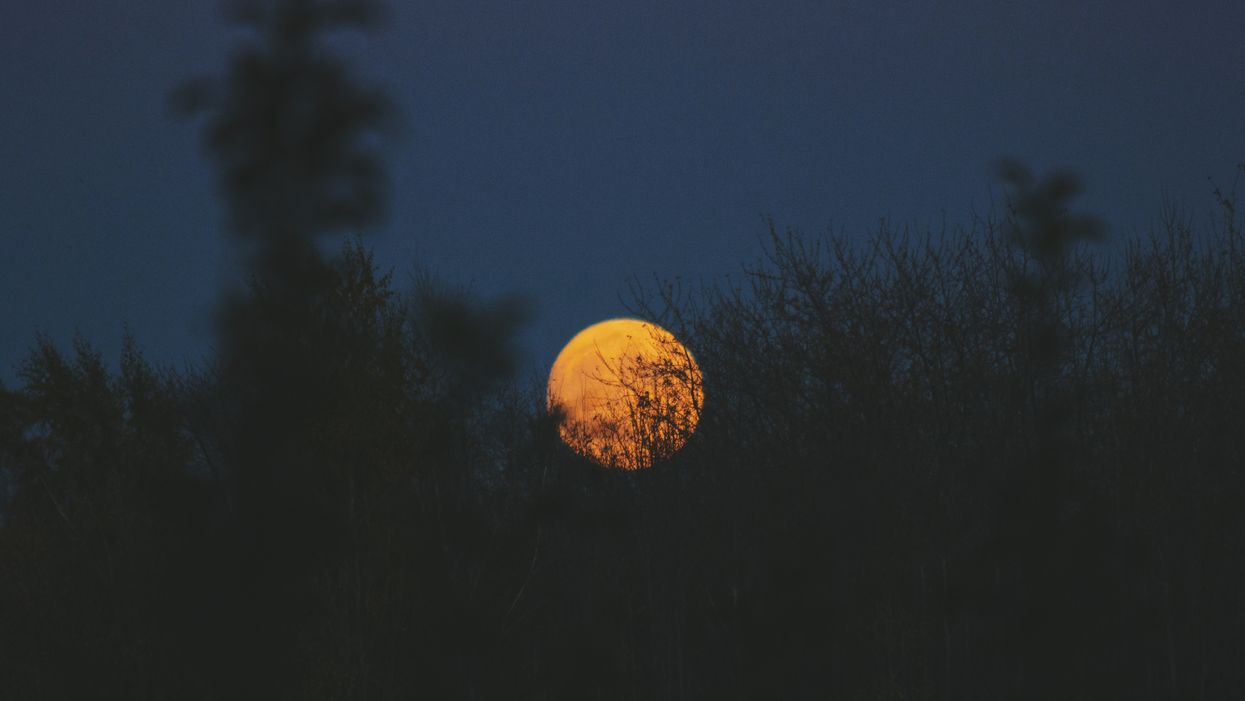 An Incredible Full Hunter's Moon Will Be Visible Across Canada During Thanksgiving Weekend