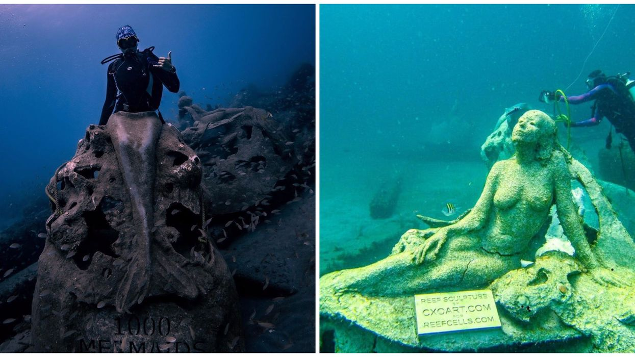 You Can Actually Dive To An Underwater Art Gallery In South Florida & It's Enchanting