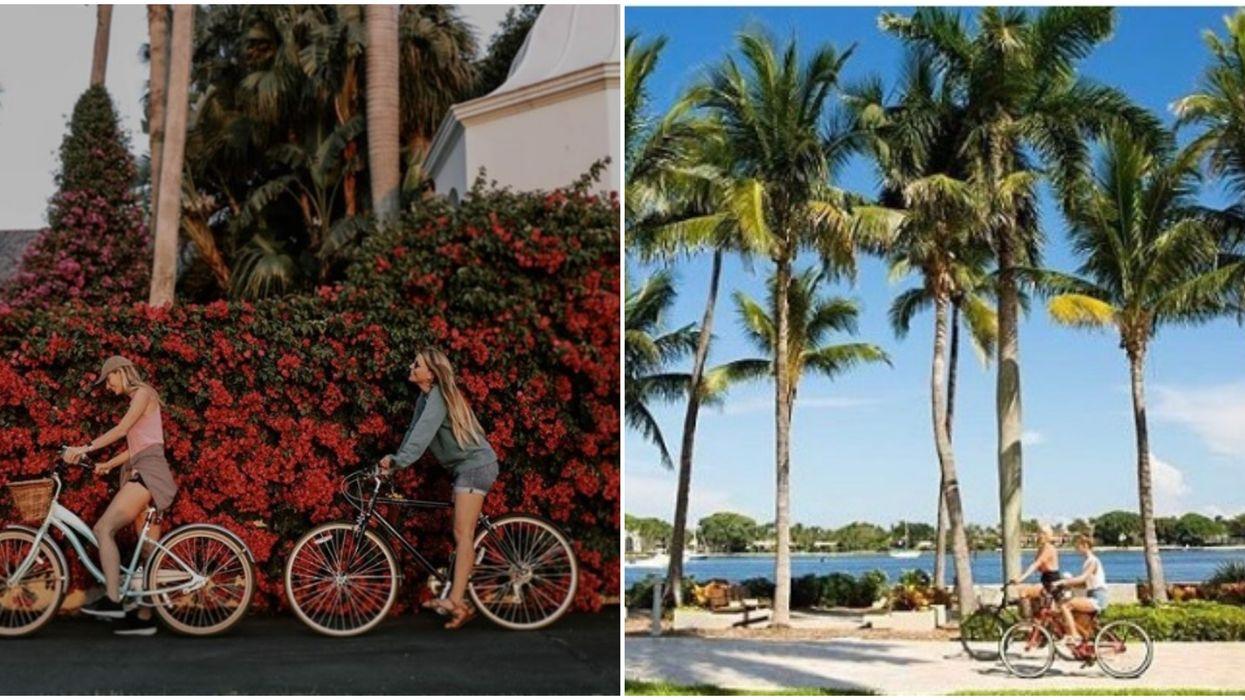Actividades al aire libre en Florida incluyen The Palm Beach Lake Trail