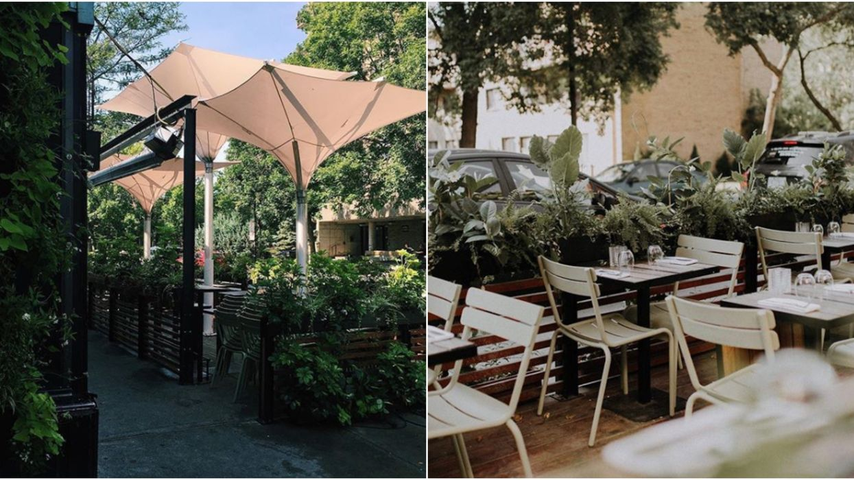 Ces deux terrasses de Montréal ferment et donnent gratuitement leurs magnifiques plantes