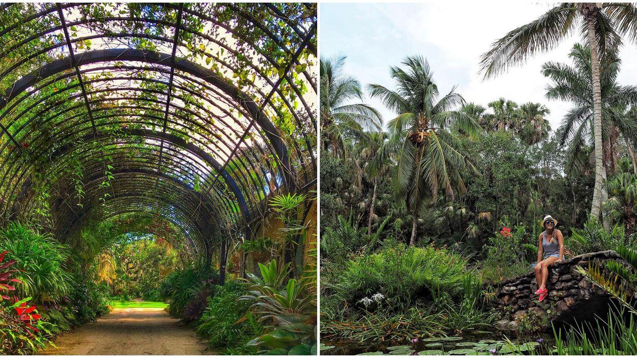 Botanical Garden In South Florida Feels Like Tropical Floral Fairy Wonderland
