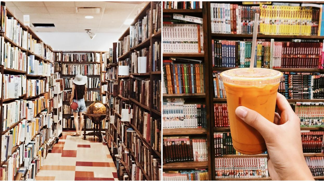 Affordable Book Stores In Tampa Include Mojo Books & Records Book Cafe