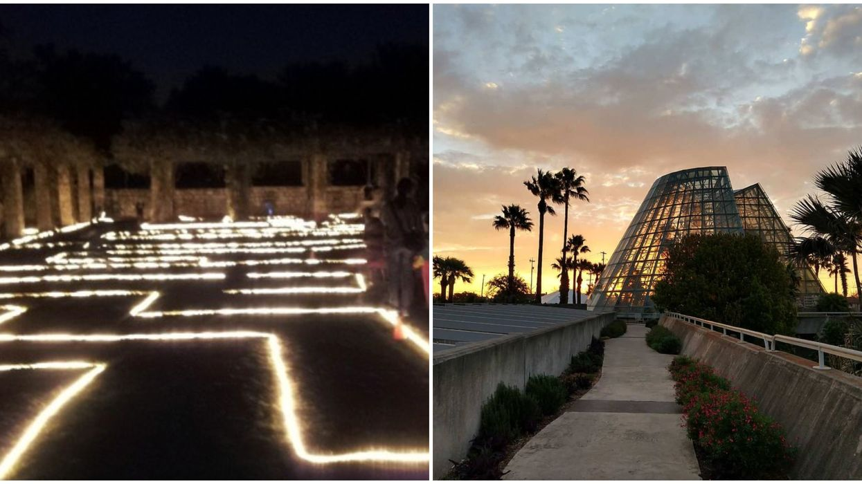 This San Antonio Garden's Flashlight Night Maze Is Coming Next Month