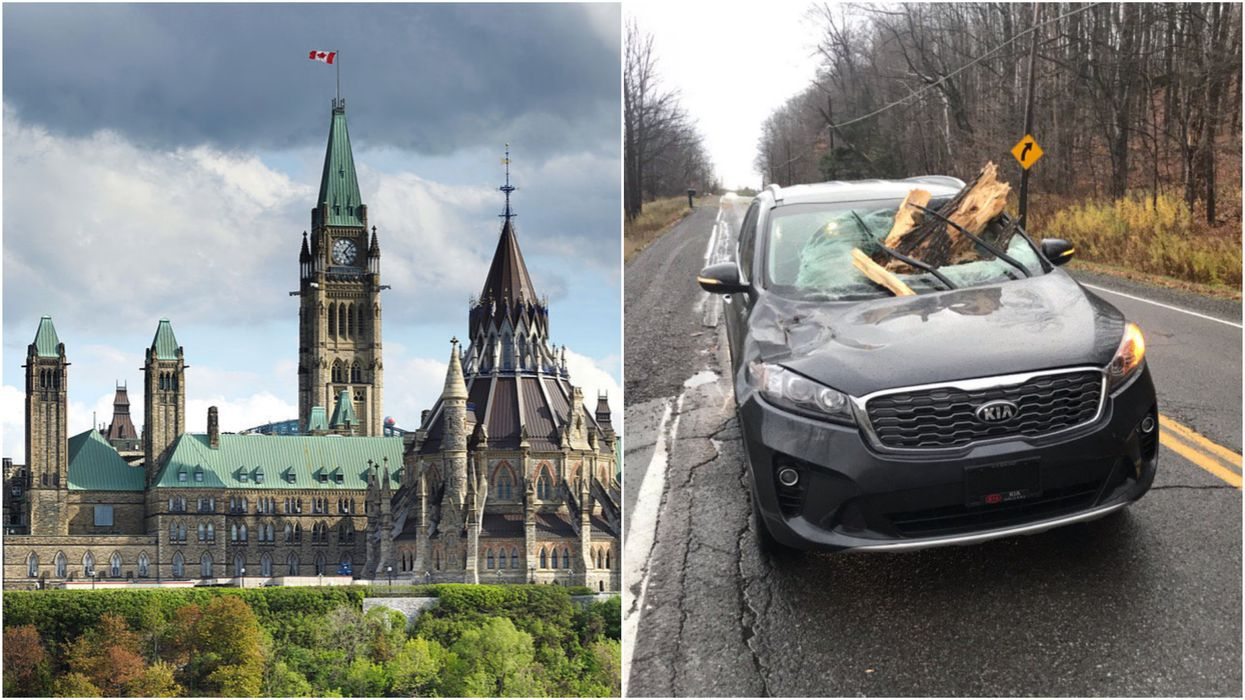 There's Winds Of Up To 75km/h In Ottawa & It's Causing Total Chaos (PHOTOS)