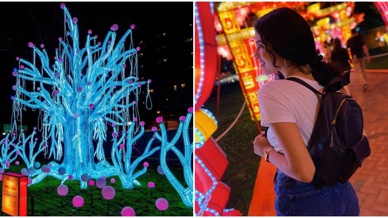 Chinese Lantern Festival In Atlanta Is Bringing Magical Neon Animals To The Holiday Season