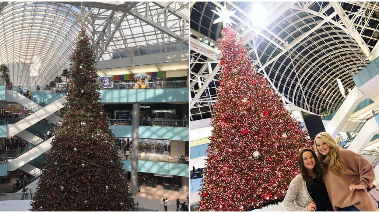 Dallas' Galleria Indoor Christmas Tree Is The Largest In The Entire World