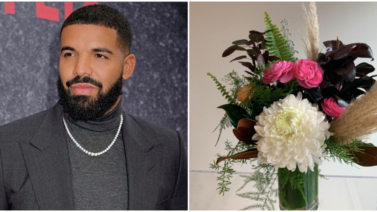 Drake More Life Flowers Are Mysteriously Appearing Around Toronto