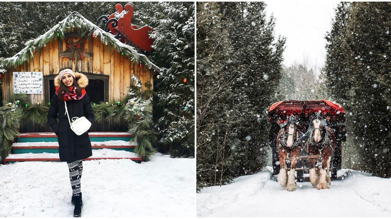 Ontario's Stanley's Christmas Village Is A Magical Woodland Place To Explore This Winter