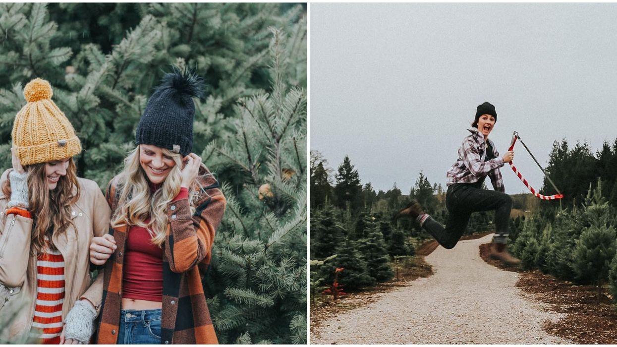 9 Charming Christmas Tree Farms In BC To Get You In The Holiday Spirit