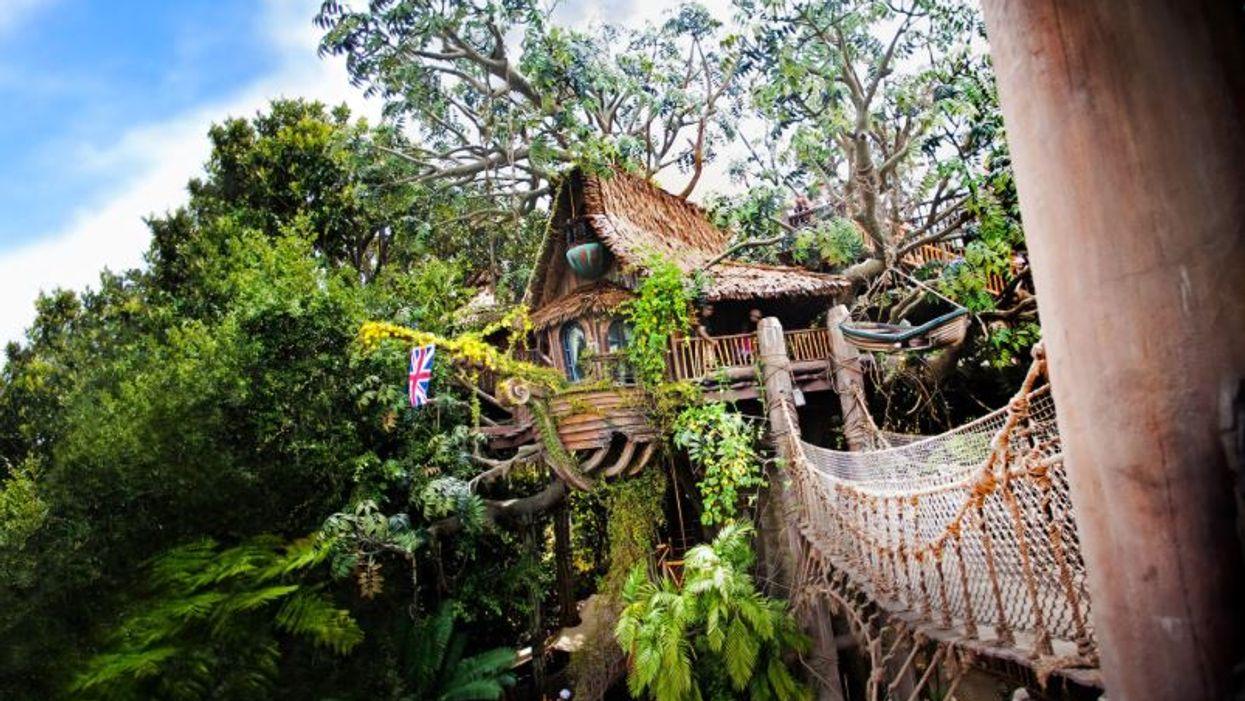 Disneyland Closed Tarzan's Treehouse After The Bridge Broke Sunday Afternoon